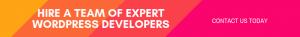 Hire a team of expert wordpress developers